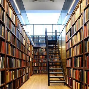 Библиотеки Мезени
