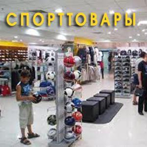 Спортивные магазины Мезени